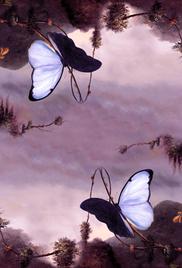 Галерея «Лиловые сумерки Ленорман»